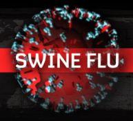 22_swineflu_Virus_k