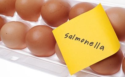 Salmonella-and-raw-eggs.jpg