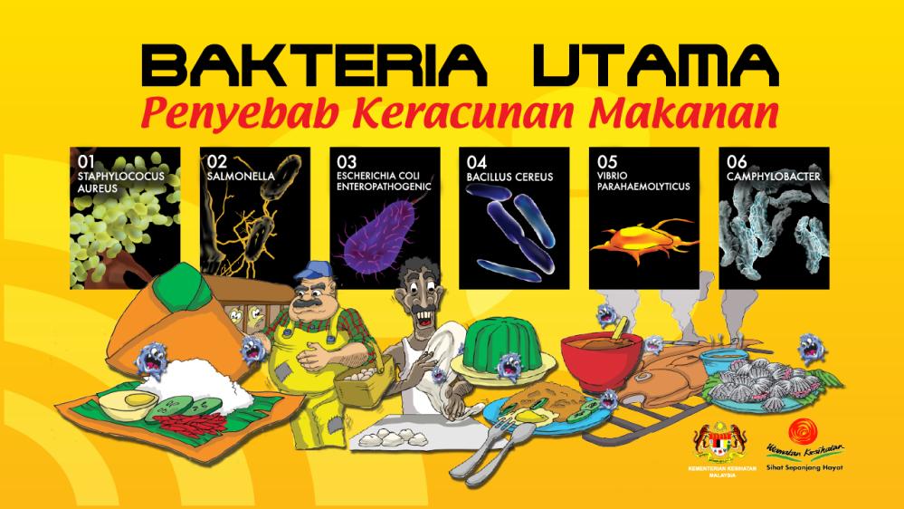 bahayanya-bakteria-01.png