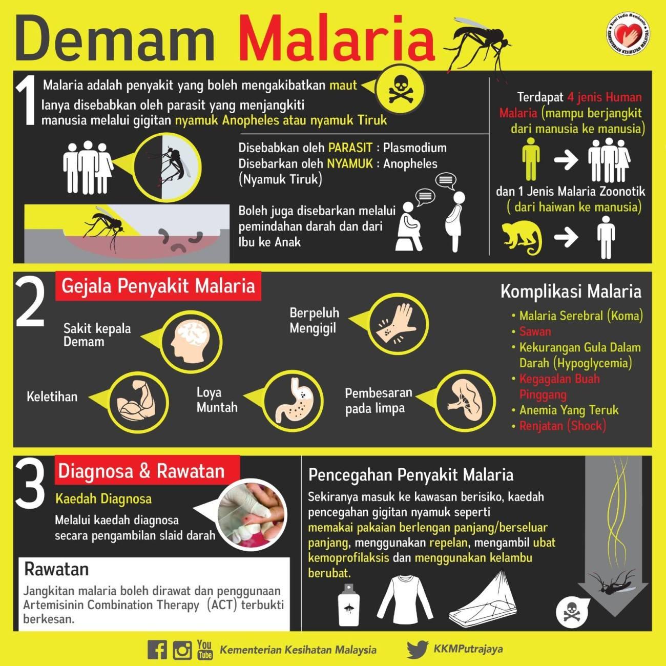 Infografik Malaria