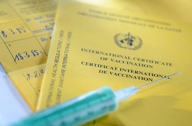 Vaccination record, international certificate of vaccination, syringe